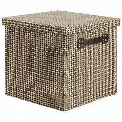 Box S Víkem Foldable