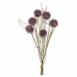 Dekorační Rostlina Bělotrn, 43cm