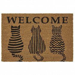 Dveřní Rohožka Welcome Cats, 40/60cm, Hnědá