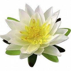 Květina Umělá Lotos