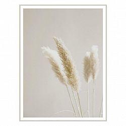 Obraz Na Plátně Flora -Paz-