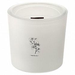 Svíčka Ve Skle Candle, 64 H.