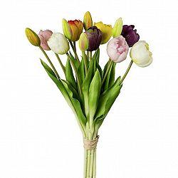 Tulipán 3019304ce-29